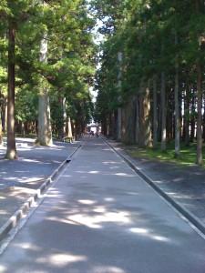瑞巌寺 (5)